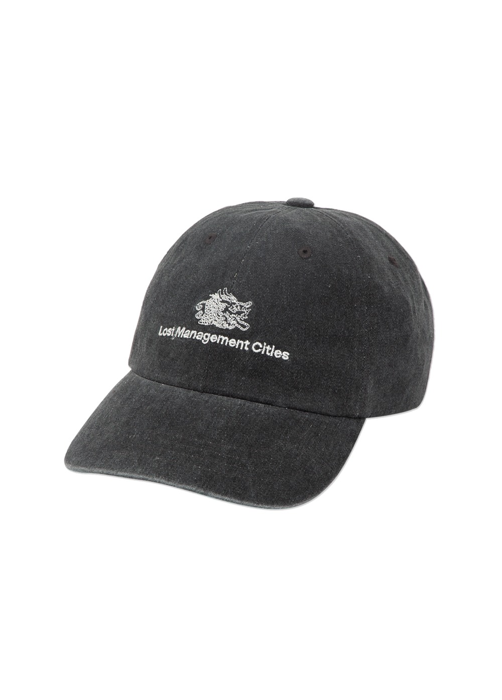 LMC OVERDYED DRAGON 6 PANEL CAP black