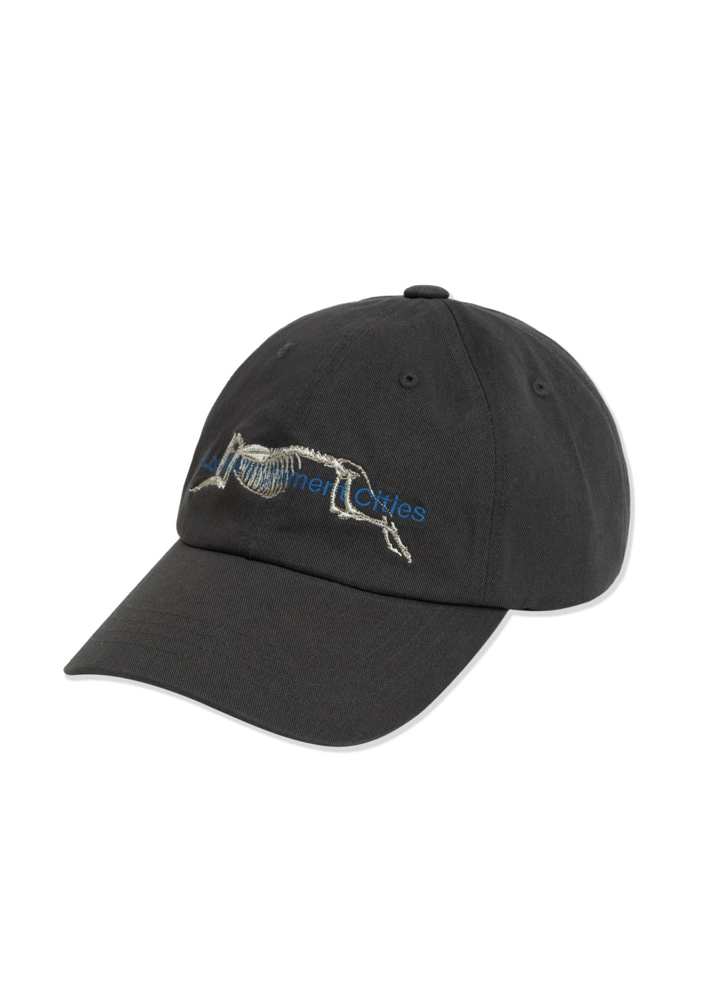 LMC SKELETON DOG 6 PANEL CAP charcoal